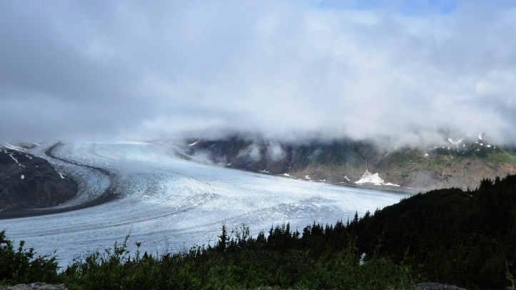 Salmon Glacier website(6)